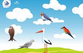 Radionica na temu Ptice, u okviru projekta