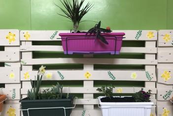 Cvijetni zid